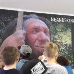 neanderthal-museum-16