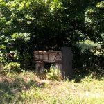 sommerferien-2017-besuch-imker-juli-12