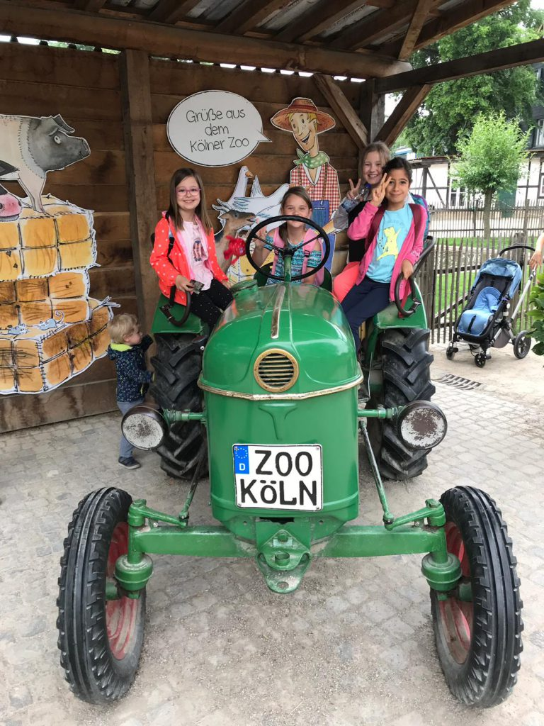 koelner-zoo-2019-2-31